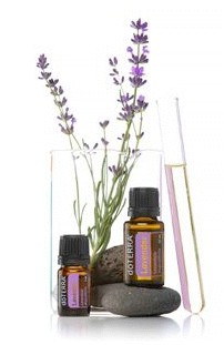 doTERRA Lavender bottles with beaker and lavender sprigs and stone