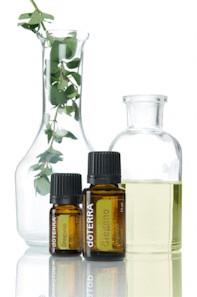 Oregano oil with sprig of oregano and beakers